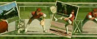 Green Baseball Player Wallpaper Border - Norwall Wallcoverings