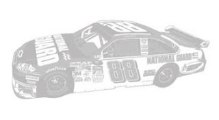 NASCAR Dale Earnhardt Jr. Sudden Shadow Wall Mural 02010