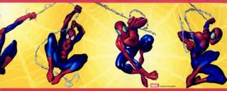 Spiderman Wallpaper and Border