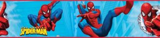 The Amazing Spiderman Peel and Stick Border